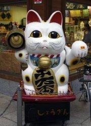 wenkende kat japan